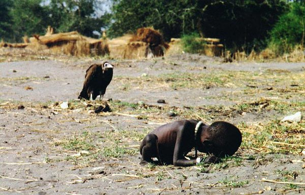 the vulture and the starving child